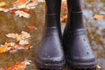 Wellington Boot Buying Guide