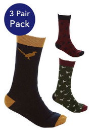 Sherwood Forest Burland 3 pair pack socks