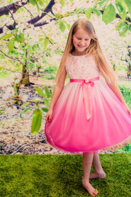 Girls Party Dress With Rosette Rose Bodice
