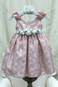 Silk Organza Baby Dress | Infant Special Occasion Dress
