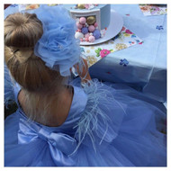 Girls Beautiful Cinderella Flower Girl Tulle Dress With Low Back