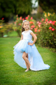 Tutu Off The Shoulder Hi Lo Flower Girl Dress Baby Special Occasion Dress