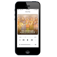 MP3 The Necessary Road to Holiness
