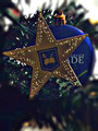 Christmas Star Ornament- closeout