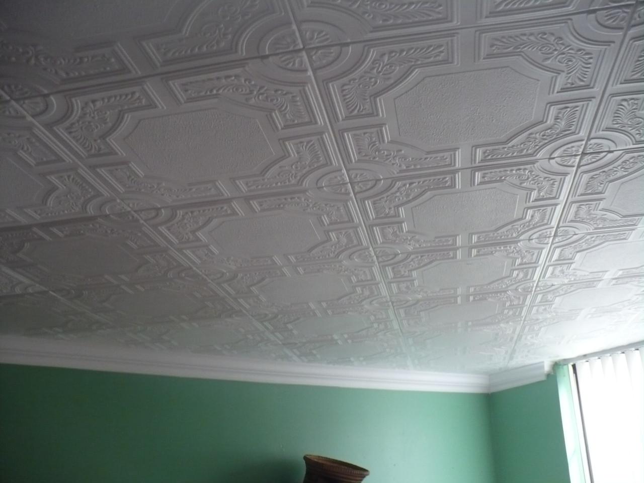 R28 Styrofoam Ceiling Tile 20x20 Caracas