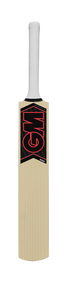 GM Mana 101 Junior Cricket Bat