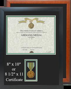Airmans Certificate Frame