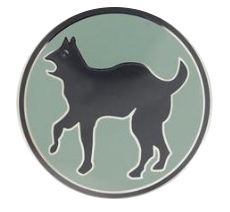 81st Regional Support Command Combat Service Identification Badge (CSIB)