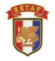 Africa and Southern European Task Force Combat Service Identification Badge (CSIB)