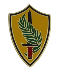 Army Element United States Central Command Combat Service Identification Badge (CSIB)