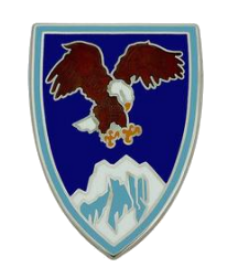 US Army Element Combined Forces Command - Afghanistan Combat Service Identification Badge (CSIB)