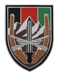 Army Element United States Forces - Afghanistan Combat Service Identification Badge (CSIB)