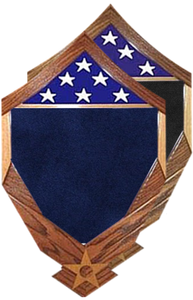 MSgt Stripes over Air Force Logo Shadow Box w/ 3' x 5' Flag Window