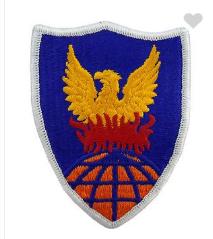 311th Signal Command- color