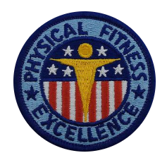 Physical Fitness Patch- color