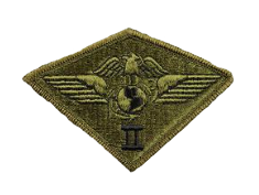 Second Air Wing Patch- subdued (NON-RETURNABLE)