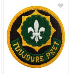 Second Cavalry Regiment Patch- color