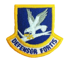 Security Force Enlisted Patch- color