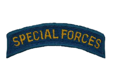 Special Forces Tab Patch- color