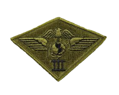 Third Air Wing Patch- subdued (NON-RETURNABLE)
