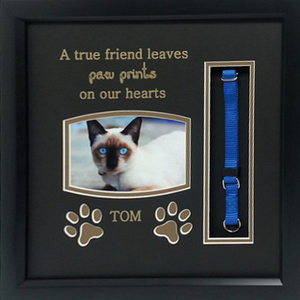 13 x 13 Pet Memorial Shadow Box Frame#1