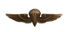 Navy/Marine Corps Badge: Parachutist- regulation, oxidized