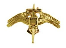 Marine Corps Badge: MARSOC Marine Corps Forces Special Operations Command