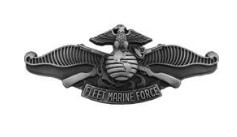 Navy/Marine Corps Badge: Fleet Marine Force - regulation size