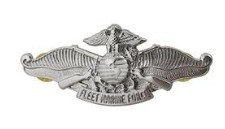 Navy/Marine Corps Badge: Fleet Marine Force Enlisted mirror finish - regulation size