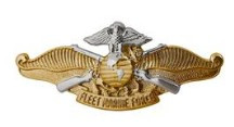 Navy/Marine Corps Badge: Fleet Marine Force Officer - regulation size