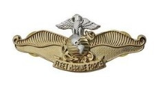 Navy/Marine Breast Badge: Fleet Marine Force Chaplain - miniature