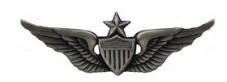 Army Badge: Senior Aviator - regulation size, silver oxidized