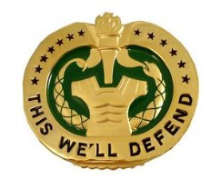Army Identification Badge: Drill Sergeant