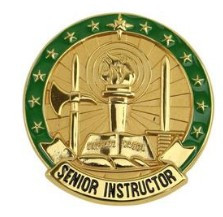 Army Identification Badge: Senior Instructor - Gold