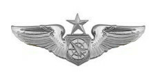 Air Force Badge: Air Battle Manager: Senior - regulation size