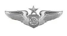 Air Force Badge: Air Battle Manager: Senior - regulation size