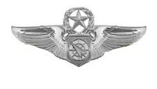 Air Force Badge: Air Battle Manager: Master - regulation size