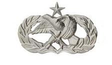 Air Force Badge: Air Maintenance Munition: Senior