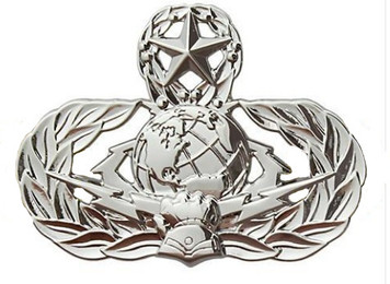 Air Force Badge: Cyberspace Support: Master - regulation size