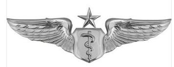 Air Force Badge: Flight Surgeon: Senior - regulation size