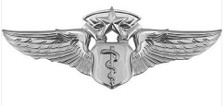 Air Force Badge: Flight Surgeon: Chief - regulation size