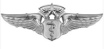 Air Force Badge: Flight Surgeon: Chief - regulation size