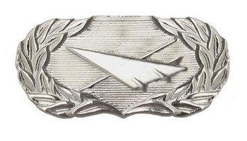 Air Force Badge: Historian - regulation size
