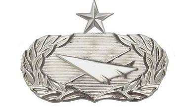 Air Force Badge: Historian: Senior - regulation size