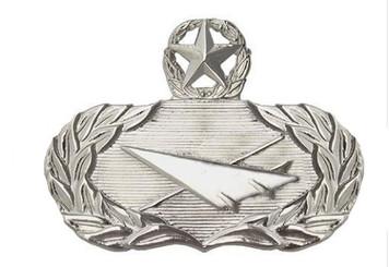 Air Force Badge: Historian: Master - regulation size