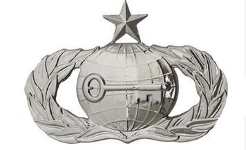 Air Force Badge: Intelligence: Senior - regulation size