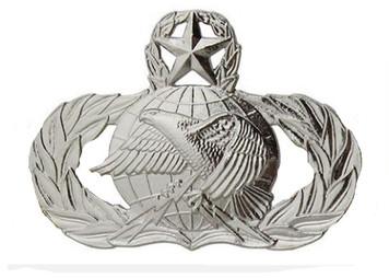 Air Force Badge: Logistics: Master - regulation size