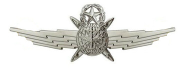 Air Force Badge: Master Cyberspace Operator: Regulation size