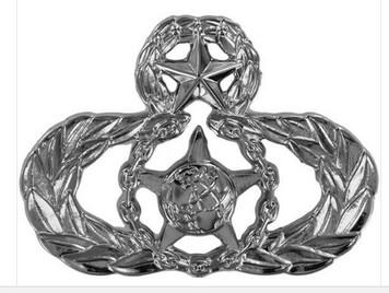 Air Force Badge: Master Safety - regulation size