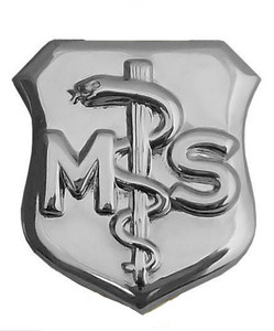 Air Force Badge: Medical Service